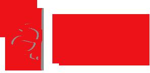 logo аспект.png
