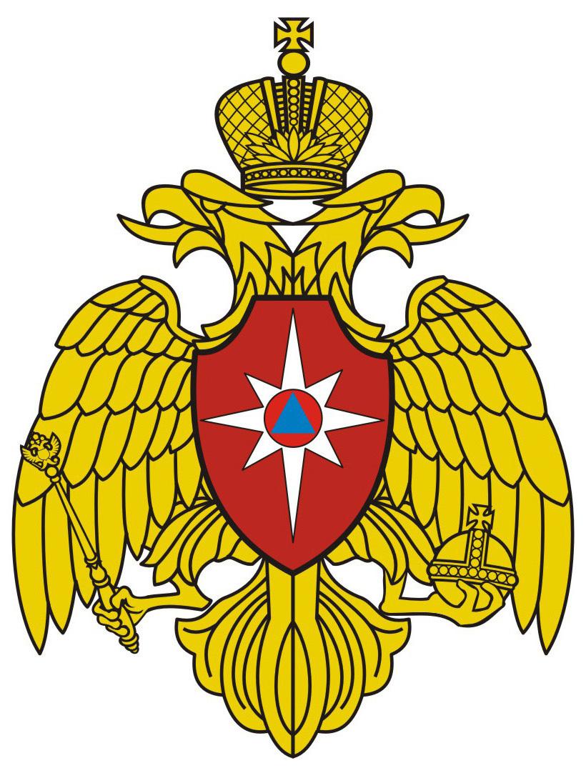 Министерство Российской Федерации по делам гражданской обороны, чрезвычайным ситуациям и ликвидации последствий стихийных бедствий (МЧС России)